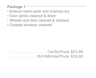 ottawa car truck detailing cleaning polish wax and wash